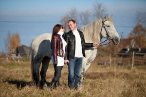 прогулки с лошадьми