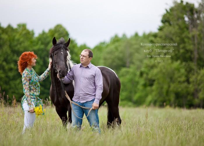 покататься на лошадях