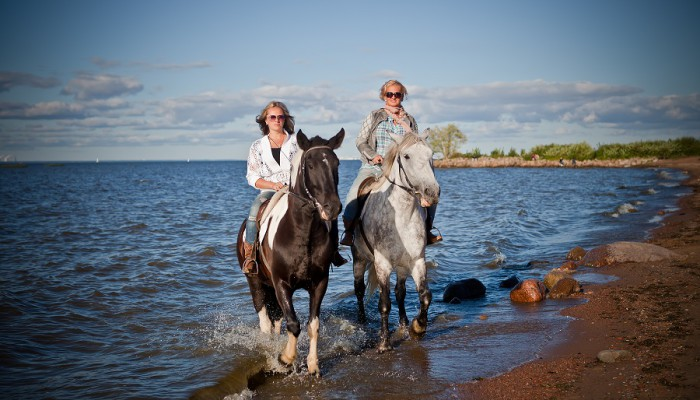 прогулка на лошадях на Финском заливе