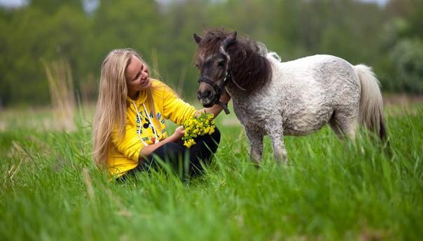 Прогулка на лошади или пони в конном клубе Петергоф