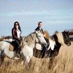 Прогулка на лошади или конные прогулки, а в чём польза?