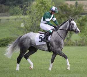 фитнес на лошади