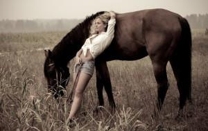 лошади в нашей жизни