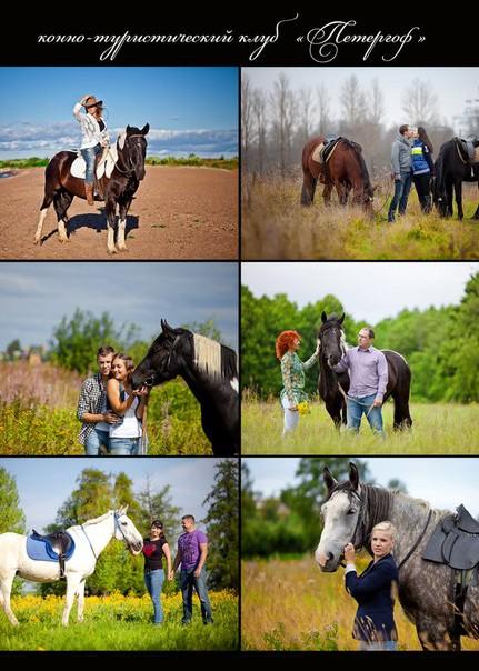 конный клуб Петергоф