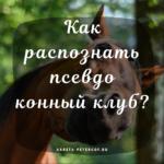 Как распознать поддельный конный клуб?