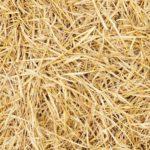 Чем заменить сено?