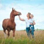 Топ правил обращения с лошадью
