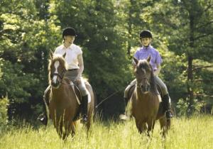 Как превратить конную прогулку в кошмар