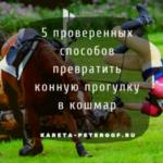 Как превратить конную прогулку в кошмар? 5 проверенных способов