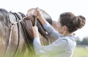 10 ошибок, которые вы можете совершить на первой конной прогулке