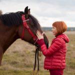 Много ли вы знаете о лошадях?