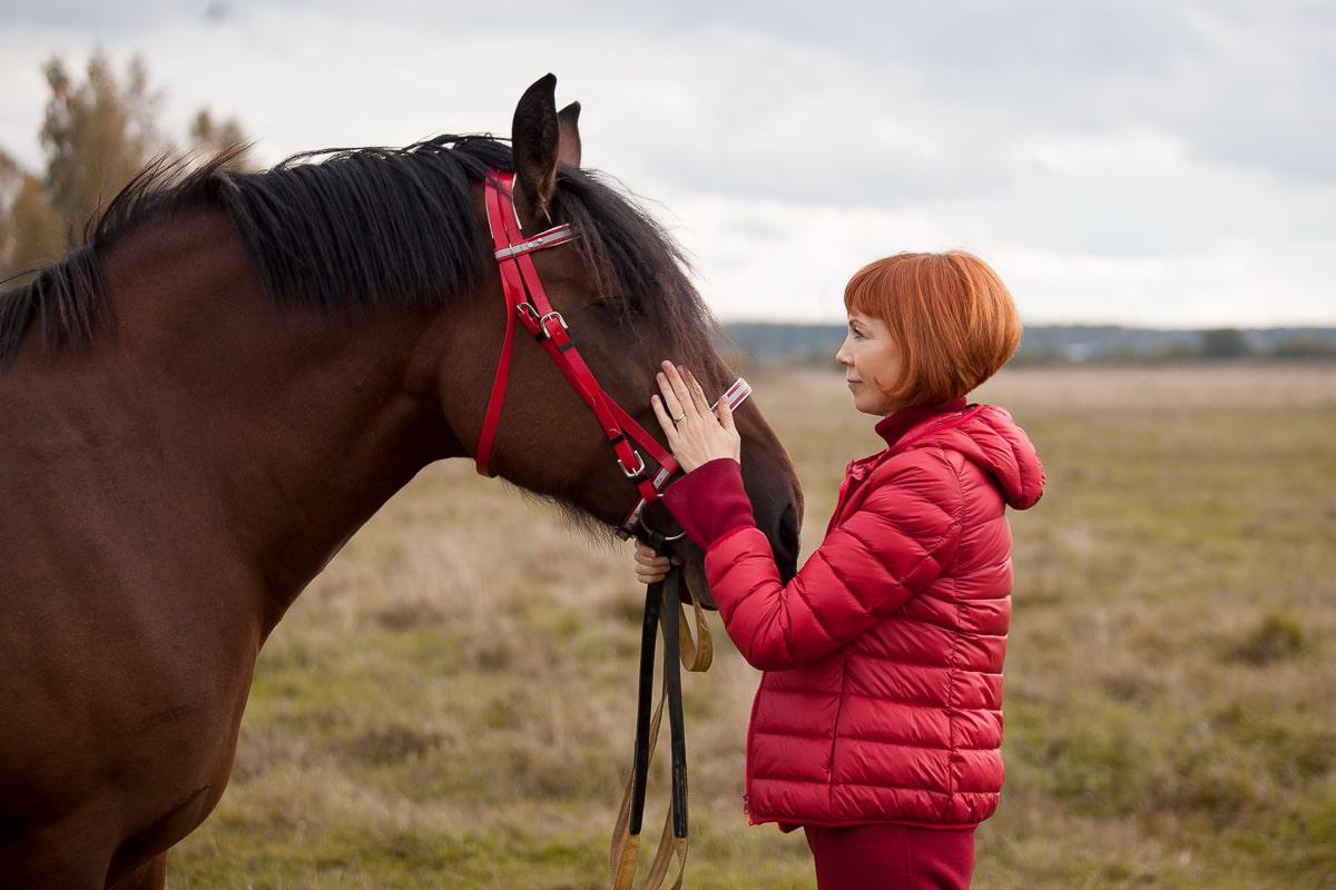много ли вы знаете о лошадях